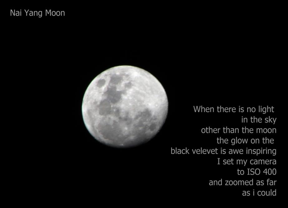 Nai Yang Moon