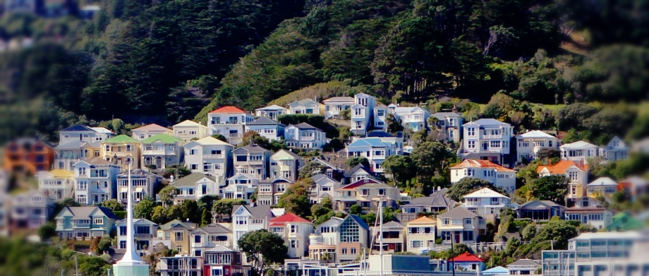 Wellington Coloured Houses