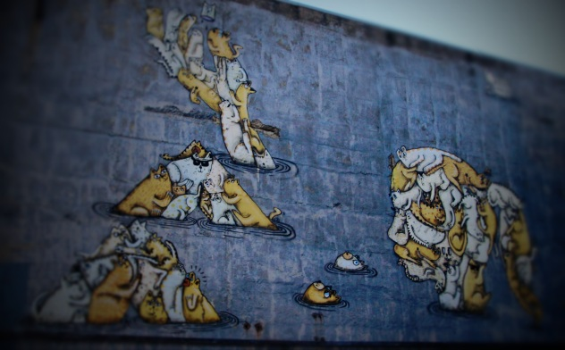 Cat Wall Wellington NZ
