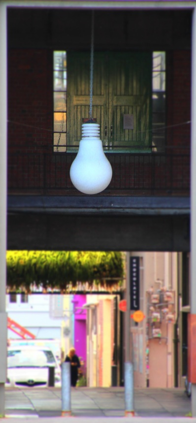 Eva Street Bulb Wellington NZ