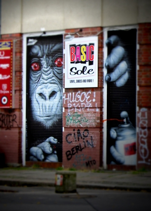 Monkey art Berlin