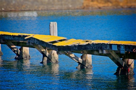 Broken Wharf Yellow top