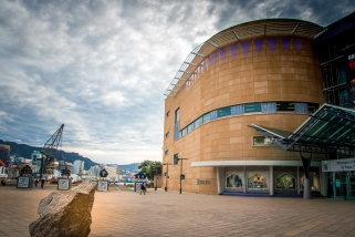 Te papa Wellington NZ